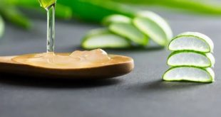 Aloe Vera helps reduce body weight